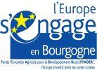 LOGO bourgogne_FEADER